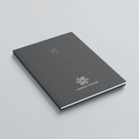 Εκτύπωση λογοτύπου στο εξώφυλλο ή οπισθόφυλλο του βιβλίου με την μέθοδο της ασημοτυπίας, η οποία επιφέρει ένα μεταλλικό αποτέλεσμα με λάμψη.