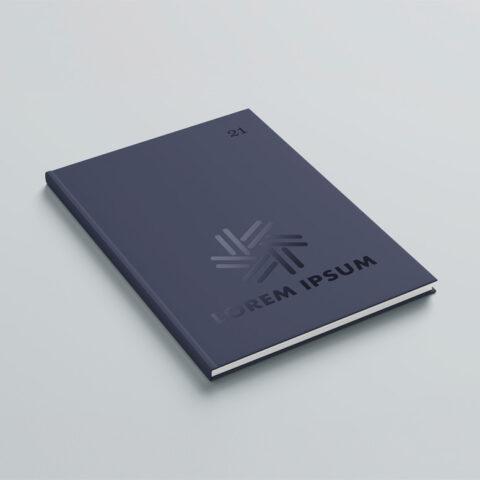 Επίστρωση τοπικού UV στα εξώφυλλα της illustrated συλλογής με στόχο την ανάδειξη συγκεκριμένων λεπτομερειών του βιβλίου και την δημιουργία αντίθεσης ανάμεσα στο matte φόντο και στο γυαλιστερό στοιχείο του UV.
